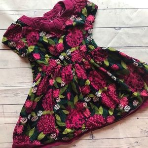 2t floral Gymboree dress